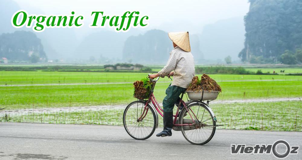 Organic Traffic - Lưu lượng truy cập tự nhiên là gì?