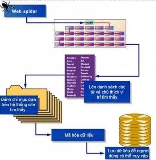 4 bước thu thập dữ liệu của google